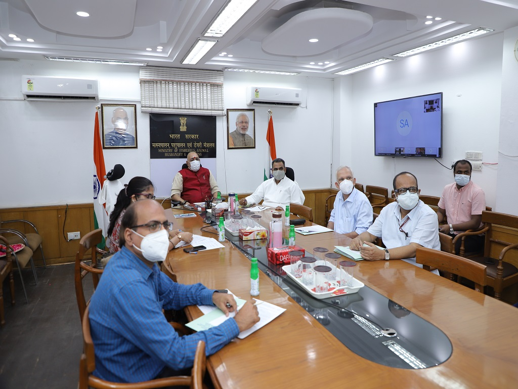 Launch of Digital Import Clearance System (Pilot Phase)