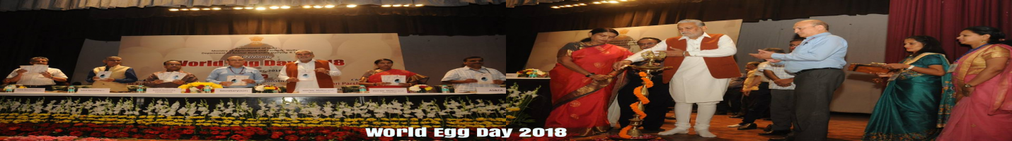 World Egg Day 2018
